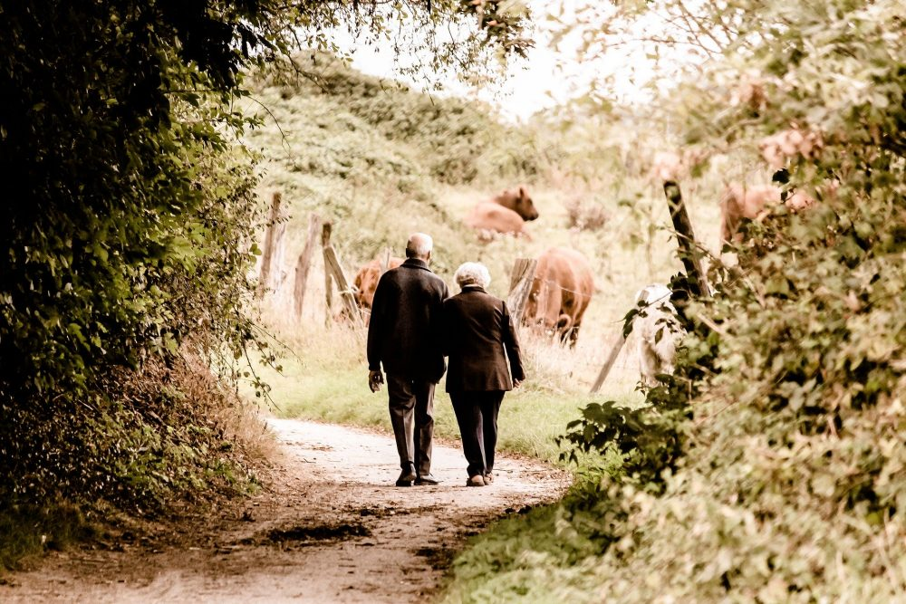 Rear view of a pensioner couple walking on a woodland path.
