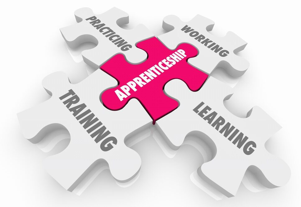 Image shows 5 piece puzzle with apprenticeship in the centre and the words training, learning, practicing, working surrounding it.